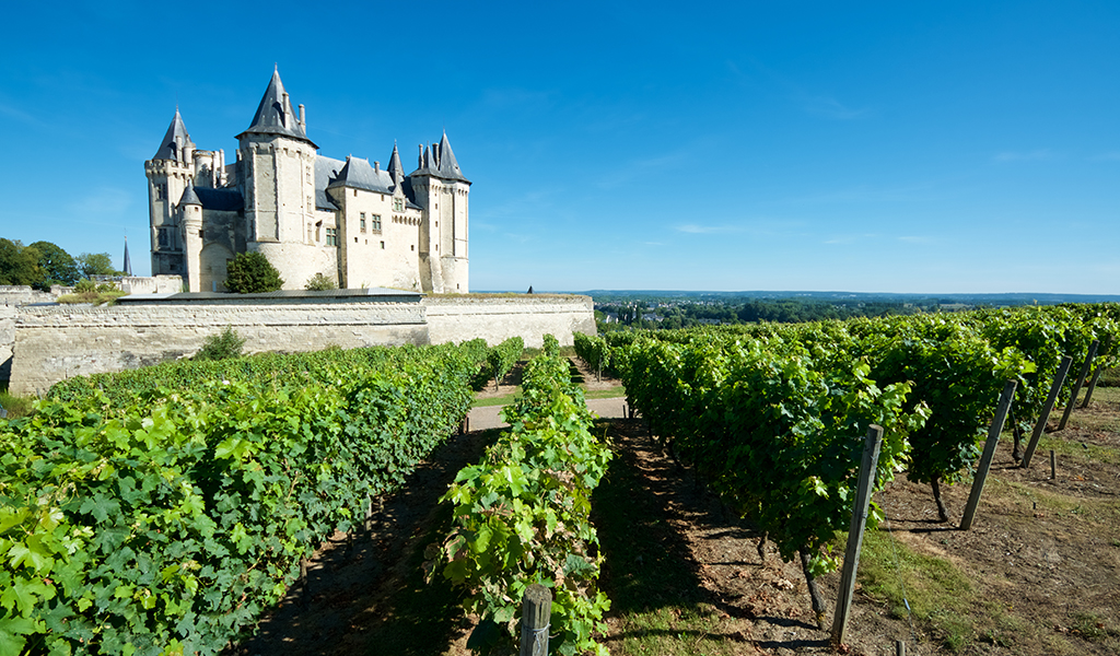 France group travel wine
