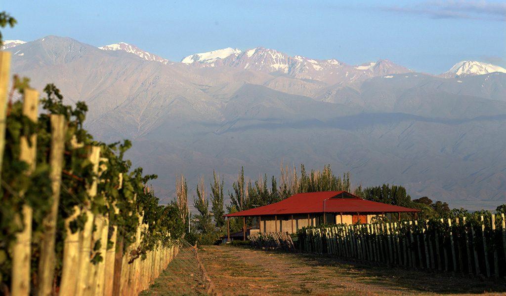 Mendoza (1) 1024x600