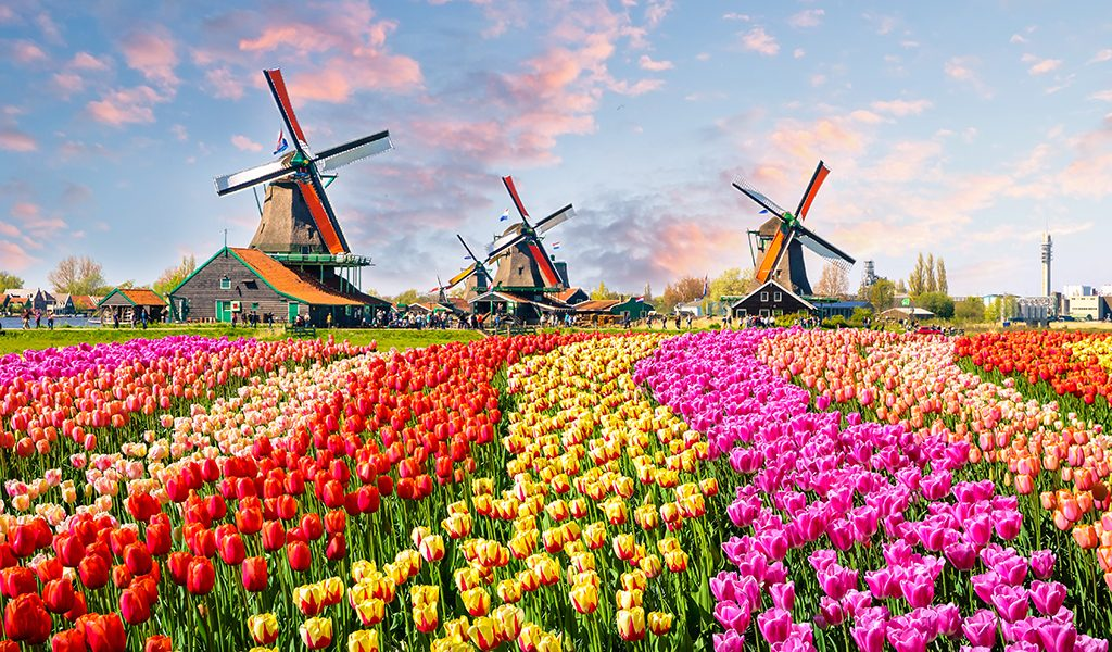 netherlands group travel
